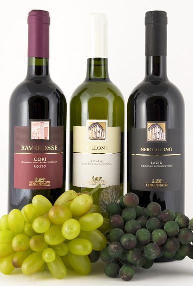 italian wine, wine, wine bottles